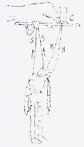 figura-6.jpg